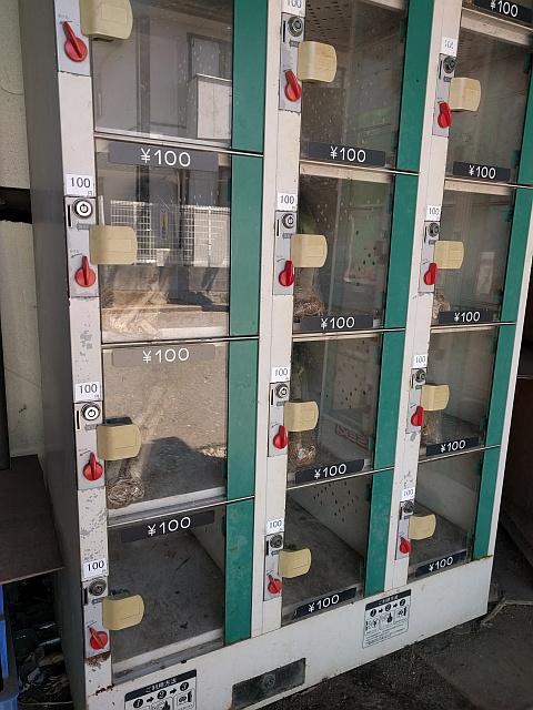 無人販売所のコインロッカー